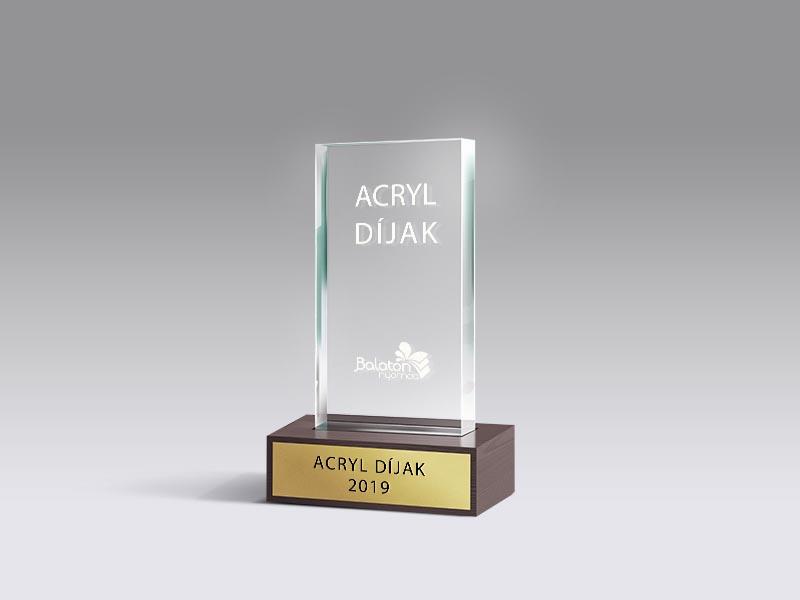 Akryl díj